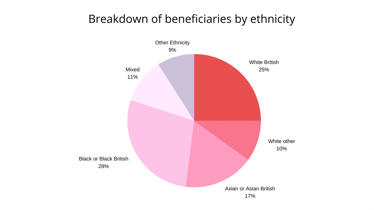 Breakdown of beneficiaries by ethnicity that show 75% of total beneficiaries from the Programme in 2018/19 were from BAMER backgrounds